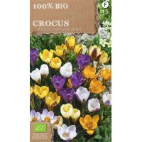Crocussen species mix go 4 pure 100% BIO 15 stuks