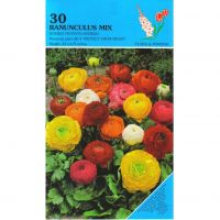 Ranunculus double mix 30 bloembollen